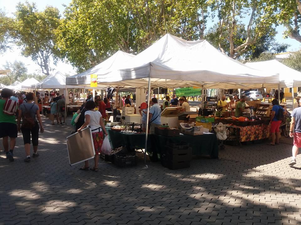 alameda-market