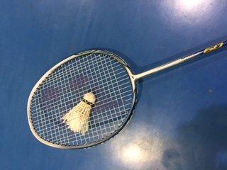 badminton seville
